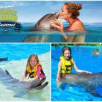 Delfín interactivo Cozumel