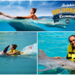 Delfín Swim & Ride Cozumel
