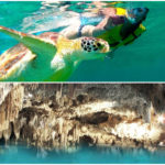 Tortugas – Cenote – Express