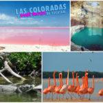 Las Coloradas – Río Lagartos – Cenote